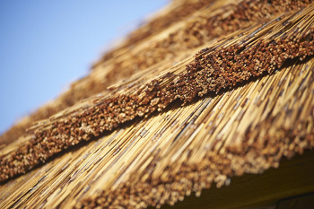 cape reed thatched roof tiles