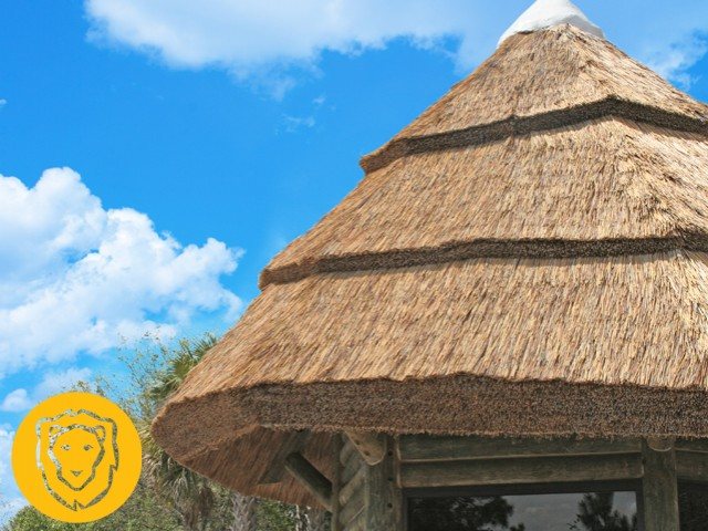 Synthetic Thatch Roof