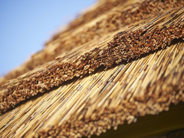 thatch tiles